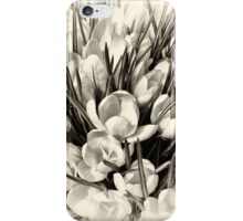 Once upon a summertime iPhone Case/Skin