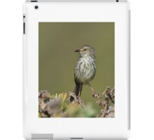 Prinia Pose iPad Case/Skin