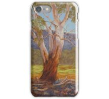 Megalong Majesty - Pastel Painting  iPhone Case/Skin