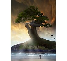 One,tree,island Photographic Print