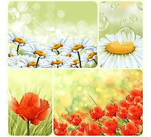 Flowers collage Photographic Print