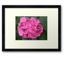 Proud, Pink & Powerful Framed Print