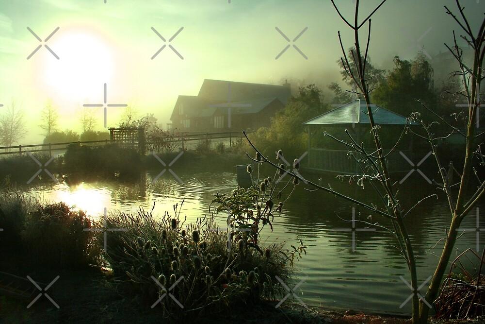 Light Through Mist by Geoff Carpenter