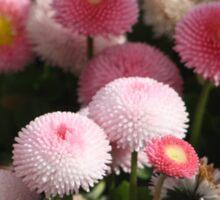 Flores Rosas Sticker