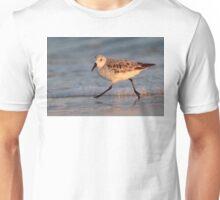 Beach Walker Unisex T-Shirt