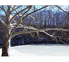 Winter at Lake Glacier Photographic Print