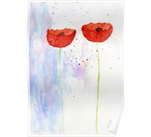 Poppies #11 Poster