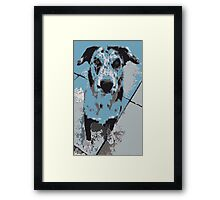 Catahoula Catawhat Leopard Dog Framed Print