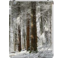 Beautiful icy forest lanscape view, winter time iPad Case/Skin