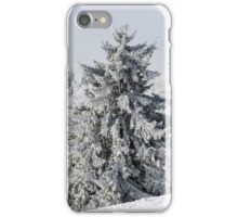 Beautiful snow-covered fir trees in winter forest, french mountains iPhone Case/Skin
