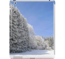Beautiful perspective natural landscape with frosty trees, winter fairy tale iPad Case/Skin