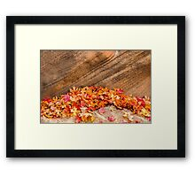 AUTUMN LEAVES - ZION NP Framed Print