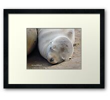 You've Got the Cutest Little Baby Face Framed Print