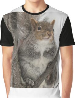 Grey squirrel in a tree Graphic T-Shirt