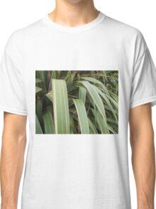 Long stripped green leaves Classic T-Shirt