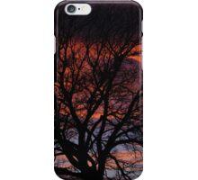 Winter Park Sunset iPhone Case/Skin