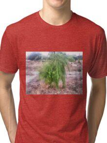 Willow Tri-blend T-Shirt