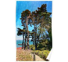 Golden Cypress Trees Poster
