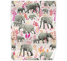 Sweet Elephants in Pink, Orange and Cream Poster