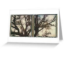 them big oak trees Greeting Card