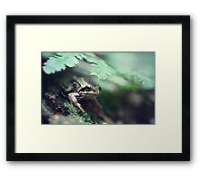 Well, hello there... Framed Print