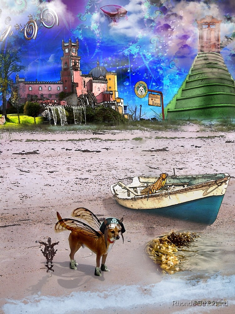 What Do Dogs Dream?  by Rhonda Strickland