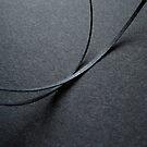 Black on black. I by Bluesrose