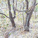 Two in the Bush by John Douglas