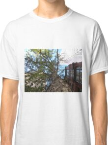 A Tree In the City by Leebabe (Providence, RI) Classic T-Shirt