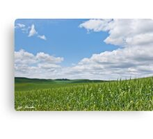 Rolling Wheatfields in the Palouse Canvas Print