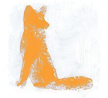 Orange Finger Painted Arctic Fox Photographic Print