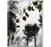Autumn 11 iPad Case/Skin