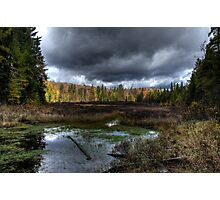 Stormy marsh Photographic Print