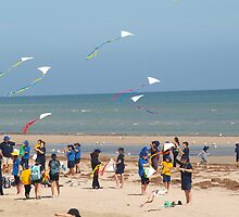 go fly a kite by dennis wingard