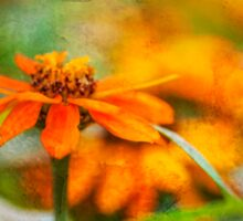 Flower Texture Sticker