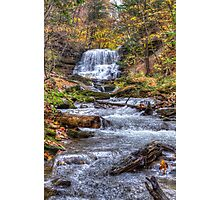 Forest waterfall Photographic Print