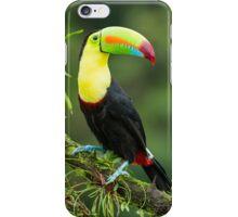 Keel-billed Toucan in tropical Costa Rica iPhone Case/Skin