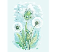 The Dandelion Harvester Photographic Print