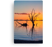 Sunset Silhouette   V Canvas Print
