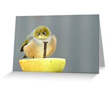 Ahhh! I Am So Sad - Silver-Eye - NZ Greeting Card