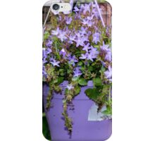 Campanula -Star of Bethlehem iPhone Case/Skin