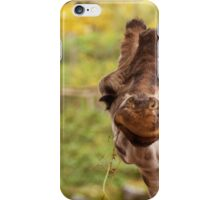 Hilarious Giraffe - Nature Photography iPhone Case/Skin