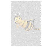 Bee Movie Script Photographic Print