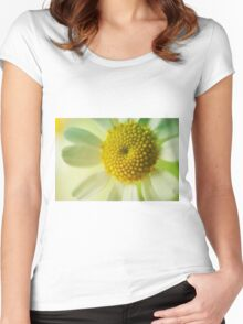 Dreamy Daisy Women's Fitted Scoop T-Shirt