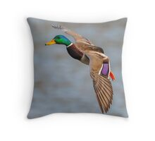 Coming into land Throw Pillow