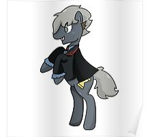 3rd Doctor Whooves Poster
