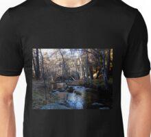 Winter River Unisex T-Shirt