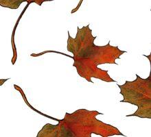 Maple Leaves: Random Pattern, Original Art Sticker