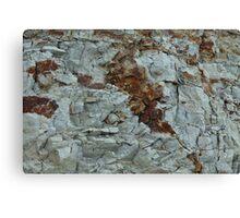 blue clay geology Canvas Print