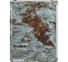 blue clay geology iPad Case/Skin